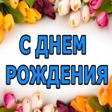 Pozdravleniya-s-dnem-roghdeniya-kollege-ghenschine-v-stihah_1.jpg